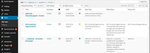 Wordpress SEO oversigt over sider
