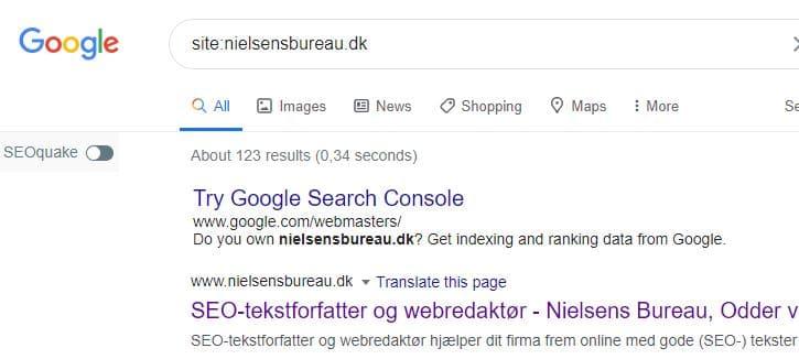 Lav en sitesøgning for at se om din hjemmeside er med på Google